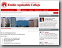 Snapshot of Emilio Aguinaldo College web site in shadow background